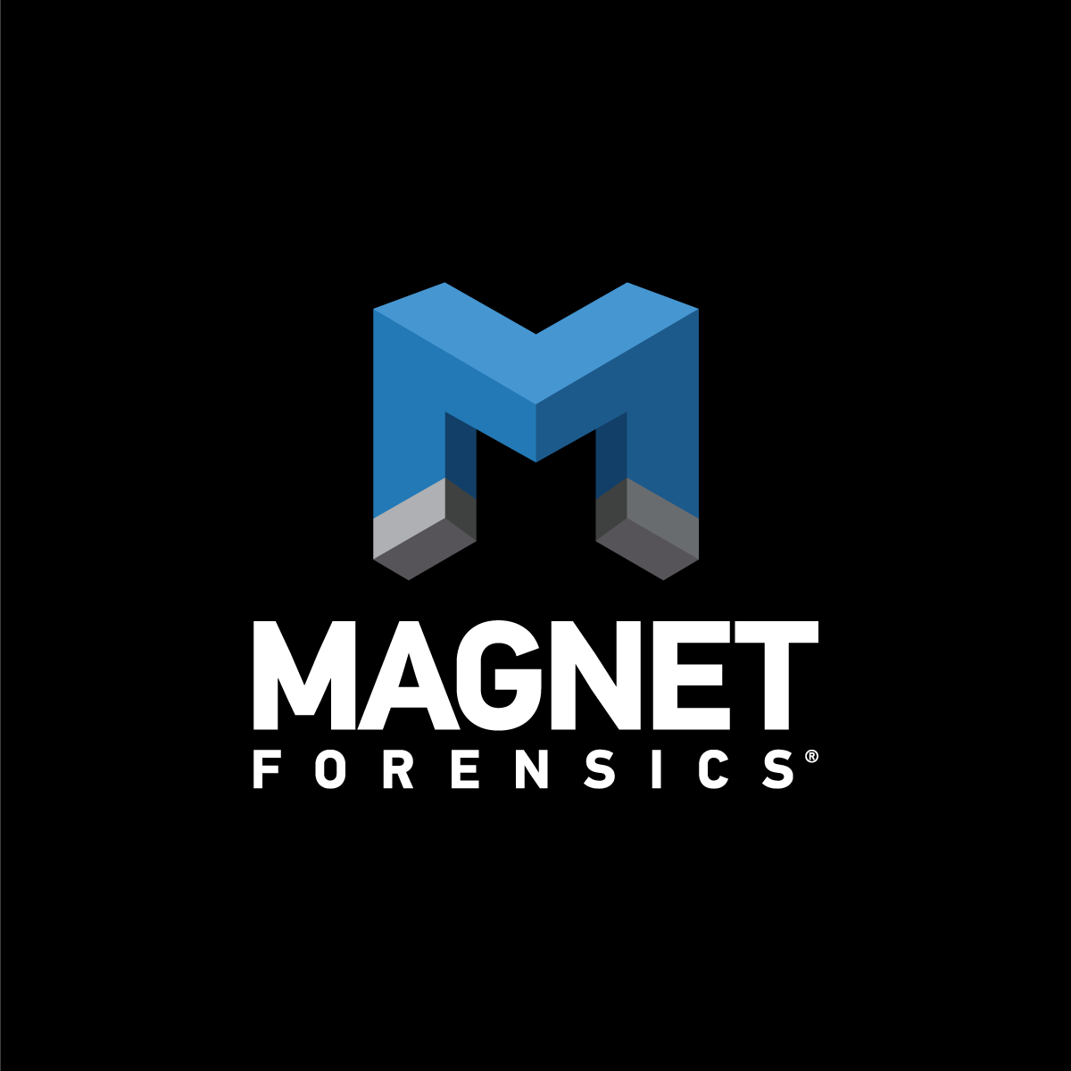 Magnet Forensics Forensics Consultant