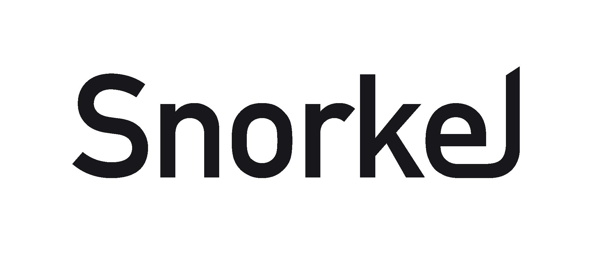 Snorkel AI logo