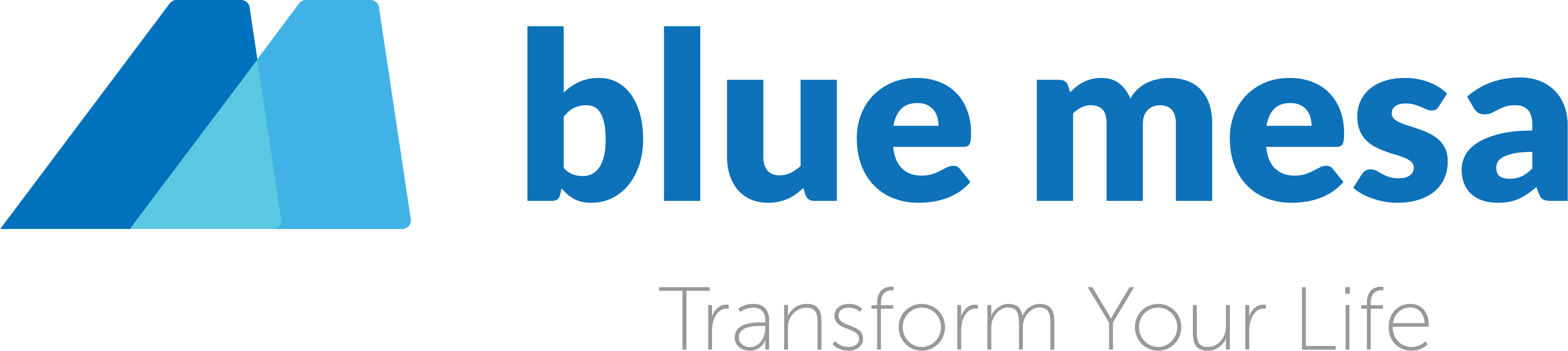 Blue Mesa Health logo