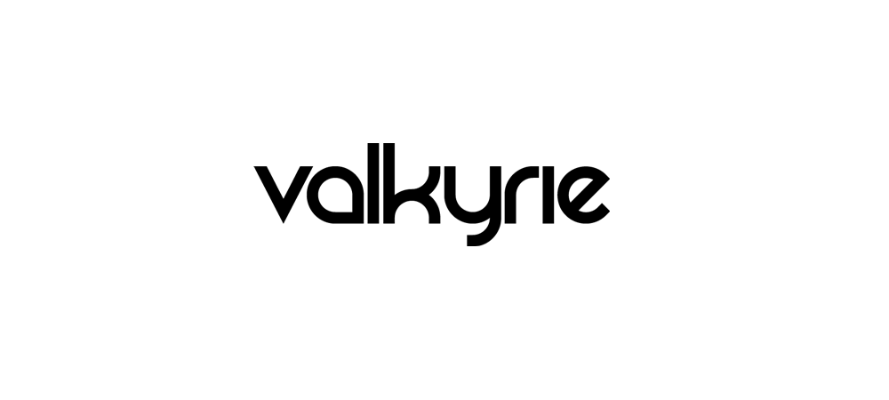 Valkyrie Trading logo