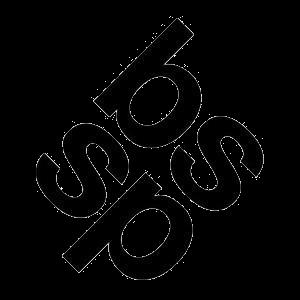 Butler, Shine, Stern & Partners logo