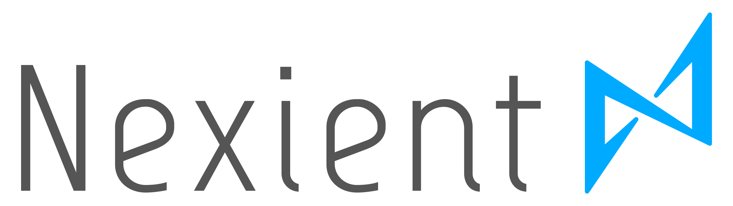 Nexient logo