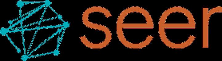 Seer Interactive logo
